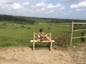 jatiluweh rijstvelden